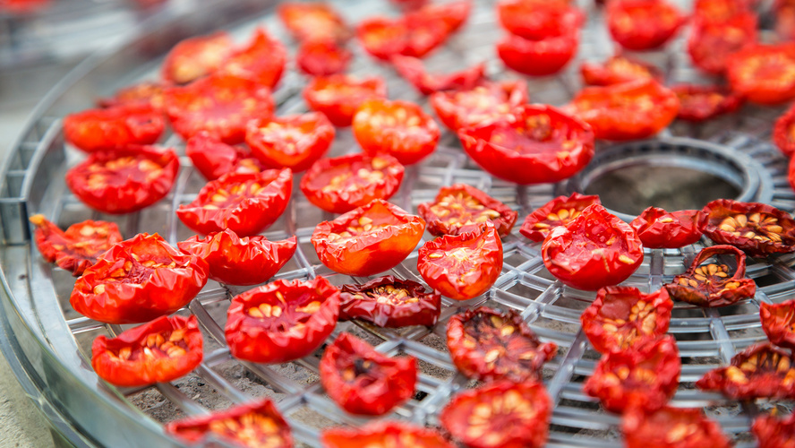 Everything you need to know to get started with drying your own food for  backpacking. Md tomatoes on rack 36c3f41694