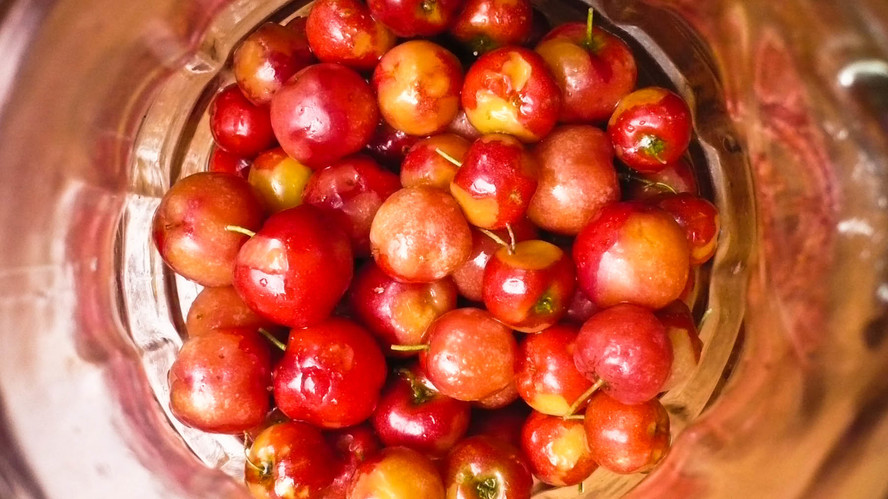 Md cherries